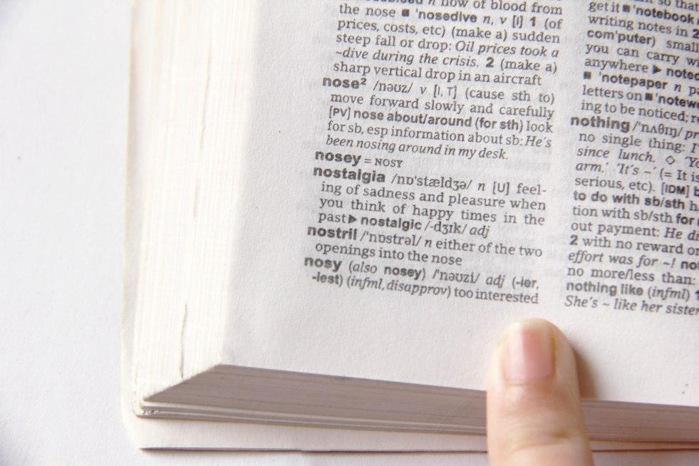 choose-a-dictionary-step-9